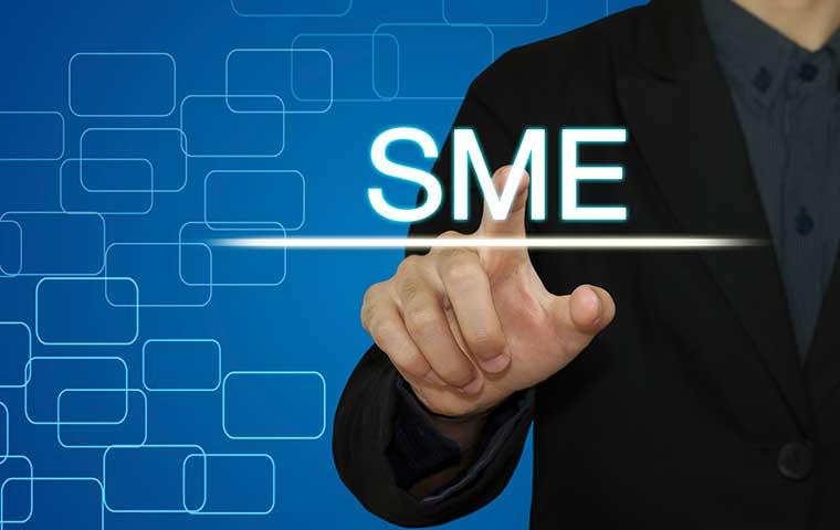 photo-SMEs